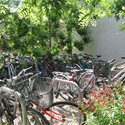 New Hall Bicycle Parking